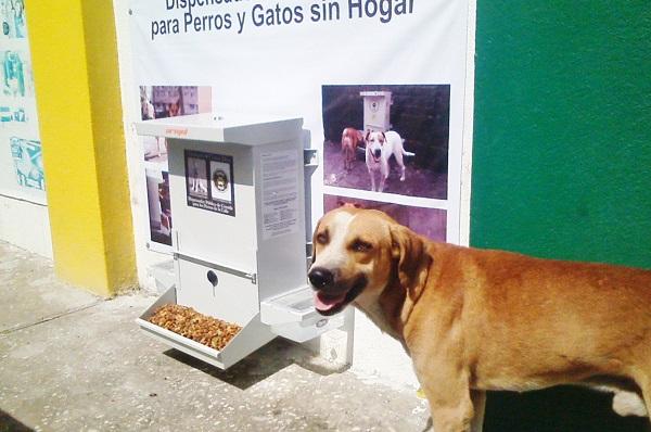 Lleg dispensador de alimento para perros for Dispensador de comida para perros