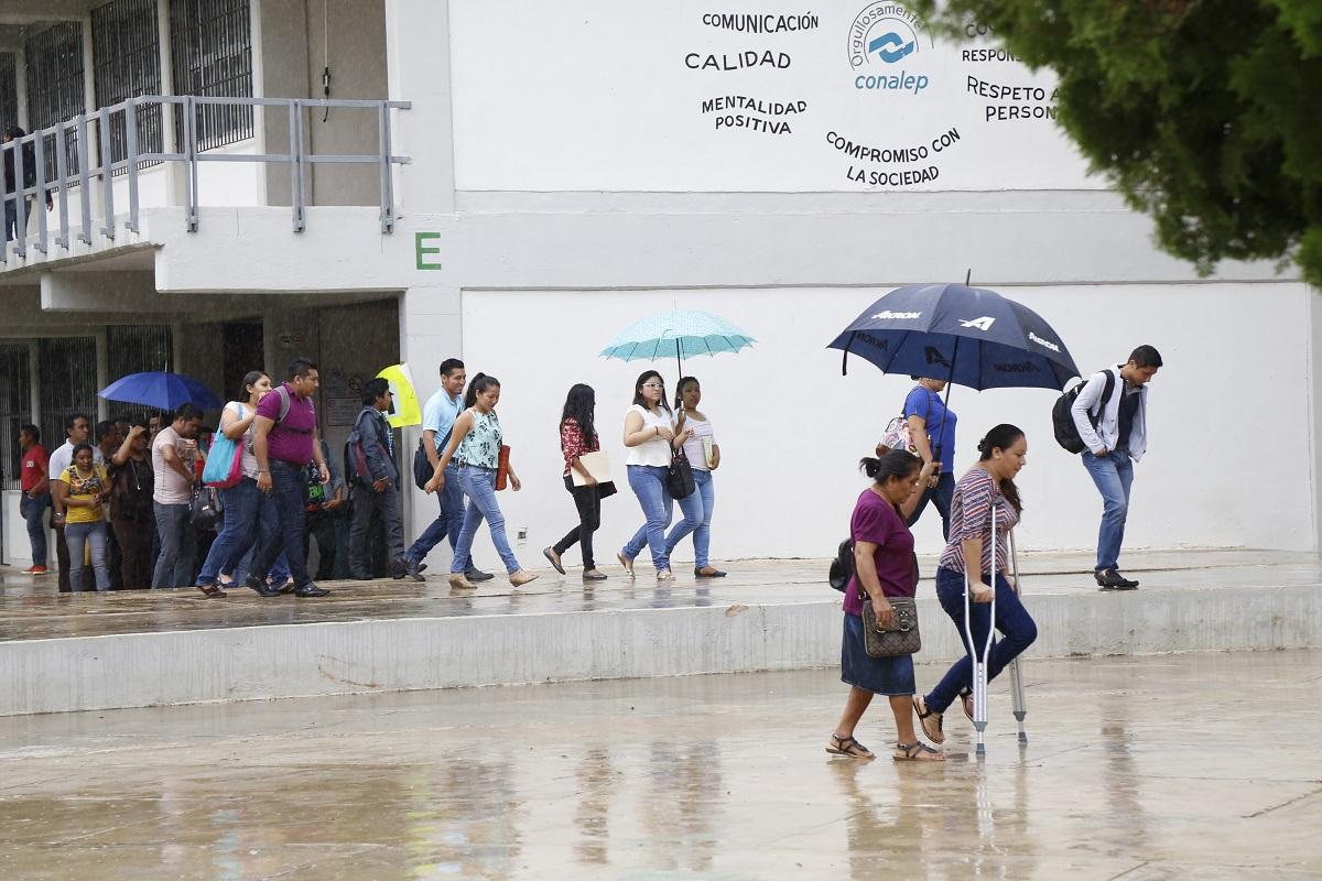 Concursan 217 maestros tribuna campeche for Plazas disponibles para el concurso docente 2016