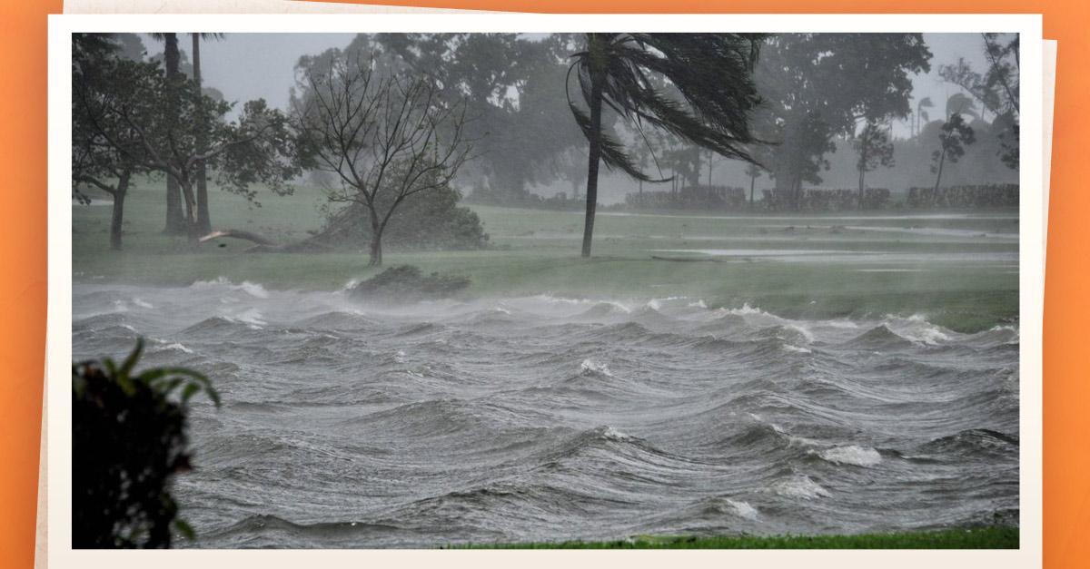 Ciudadanos enfrentan al huracán Irma con mucho humor — Florida