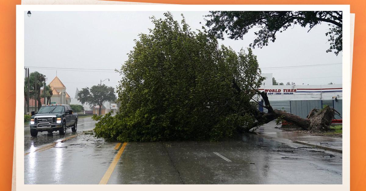 Trump visitará Florida tras huracán Irma; al menos 12 muertos en EU